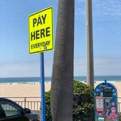ハンティントンビーチ/西海岸/アメリカ/看板/GW/おでかけ/... ハンティントンビーチ 駐車場  看板が英…(2枚目)
