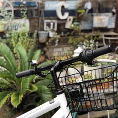 BRIWAX ブライワックス トルエンフリー 08 ジャコビアン 370ml B | ニッペホームオンライン(ワックス)を使ったクチコミ「自転車買いました  3年くらい息子と旦那…」