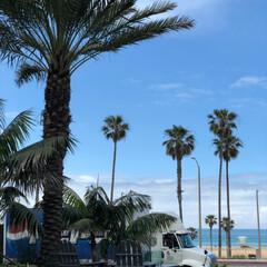 ハンティントンビーチ/西海岸/アメリカ/フォロー大歓迎/おでかけ/旅行/... アメリカ西海岸ハンティントンビーチ  す…