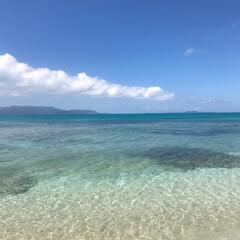 海/沖縄/LIMIAおでかけ部/おでかけ/旅行/おでかけワンショット 沖縄の海きれいですよね  人気があるのわ…
