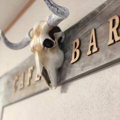 バッファロースカル/フォロー大歓迎/雑貨/雑貨だいすき/壁面インテリア バッファロースカル アメリカで買ってきち…