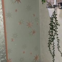 フェイクグリーン/マイルーム/壁紙/フォロー大歓迎/おうち/DIY/... マイルーム❤︎ 壁面の一部のベランダ側だ…