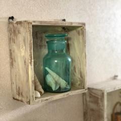 シェル/小瓶/プチプラ雑貨/100均/雑貨 100均の小瓶に シェルを入れただけの …