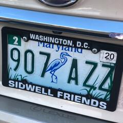西海岸/アメリカ/ナンバープレート/フォロー大歓迎/おでかけ/旅行/... 車のナンバープレート やっぱりオシャレで…
