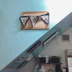 階段下/脱衣所/ペイント/フォロー大歓迎/DIY/わたしのお気に入り 階段下はビーチ🏖って ネーミングをつけち…