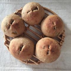 フード バッケみそパン(1枚目)
