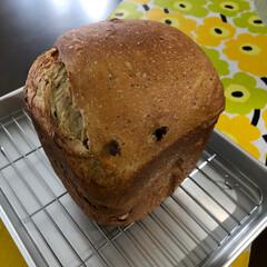 今日のお弁当/ホームベーカリー 今日のお弁当🍱 今朝焼いたパン 抹茶黒豆…(2枚目)