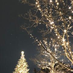 のぞみは停まらない/新幹線こだま/ライブ/東京お上りさん/今年はライブ三昧/クリスマス/... 本日のまとめ エビスガーデンプレイスのイ…(2枚目)