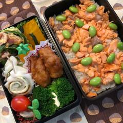 今日のお弁当/ホームベーカリー 今日のお弁当🍱 今朝焼いたパン 抹茶黒豆…