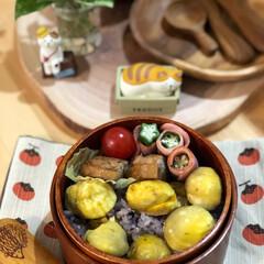 食欲の秋/秋の味覚/お弁当/栗ごはん/ご飯 今日のお弁当🍱 栗🌰ご飯🌰 yuugao…