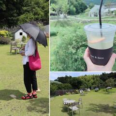 梅雨の晴れ間/おでかけ 昨日 お出かけした、浜松市都田町の ドロ…