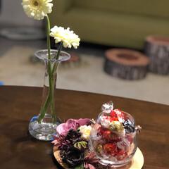 ホルムガード/ツモリチサト/リサラーソン/バーズワーズ/スイトピー/ガーベラ/... 今日は  お花を 飾って みました。 素…
