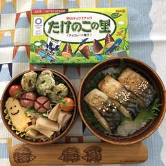 木花開耶姫/富士山の神様は女性/富士山/今日のお弁当🍱 4月14日火曜日☀️ 今日のお弁当🍱焼き…