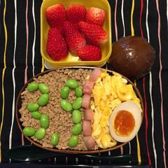 レミオロメン/3月9日/今日のお弁当/フード 流れる 季節の まんなかで  ふと  陽…