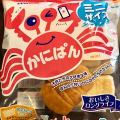 三立製菓/お菓子/フード サンリツ製菓の ロングセラーお菓子 源氏…