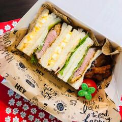 サンドイッチ/お弁当/フード 今日のお弁当 サンドイッチ🥪 これで 足…