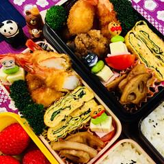 手作り/お弁当生活/お弁当🍱🍙/フード 今日のお弁当🍱  海老フライ 大葉とおか…
