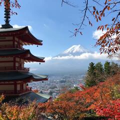 忠霊塔/紅葉/富士山/紅葉狩り/秋/おでかけ 秋の一枚フォトコンテストに参加します。 …