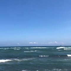 ペット/LIMIAペット同好会/わんこ同好会/おでかけ/風景/おでかけワンショット 昨日は、お天気も良くて ちょっと ドライ…(4枚目)