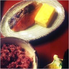 鮭/五穀米/厚焼き玉子/秋/定食/おうちごはん 秋はやっぱり鮭! 五穀米と厚焼き玉子で秋…