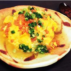 あんかけ/鮭フレーク/秋/天津飯/生姜/おうちごはん/... ふわとろ卵に鮭あんかけをかけた、天津風ご…