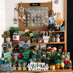 編み編み大好き/サボᒼᑋªⁿ♥︎大好き/雑貨/インテリア/わたしのお気に入り お気に入りコーナー( ´థ౪థ)  サボ…