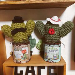 編みサボちゃん/編み編み大好き/ハンドメイド/雑貨/100均 おはようございます! 少し間が空いてしい…