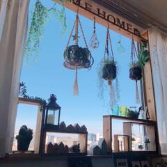 ラブリコ/デコ窓/DIY/セリア/ダイソー/インテリア/... 早朝のお空です.•*¨*•.¸¸♬ 今日…