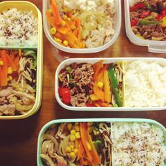 手作り/冷凍/冷凍弁当/まるごと冷凍弁当/お弁当/セリア/... 今週は肉肉しい・・! スピード全開、1時…