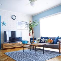 観葉植物/unico/ブリックタイル/テレビボード/リビングテーブル/ソファ/... 夏にピッタリ、しじら織りのラグ。 しじら…