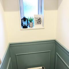 トイレ/アラウーノ/ディスプレイ/パナソニック/コラベル/インテリア トイレのディスプレイを少しポップにしてみ…