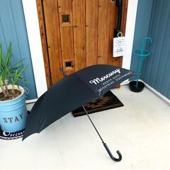 3COINS/IKEA/傘立て/幸福の木/観葉植物/西海岸風/... 地域にもよると思いますが1年で雨が一番多…