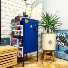 マガジンラック/ブリックタイル/IKEA/ヘリンボーン/ダルトン/観葉植物/... 我が家のマグネット収納。 IKEAで買っ…