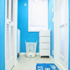 ルーバー/フレディレック/マイホーム/脱衣洗面所/西海岸/西海岸インテリア/... 脱衣所の写真。 今まで脱いだ洗濯物は洗濯…