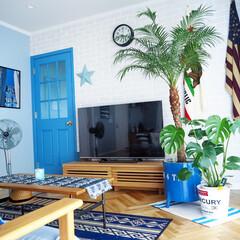 リビング/西海岸インテリア/バーンスター/ブリックタイル/リビングテーブル/名古屋モザイクタイル/... 我が家の夏っぽいアイテムはフェニックスロ…