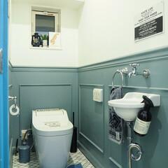 トイレマット/ペンキ塗り/マーチソンヒューム/ジャーナルスタンダードファニチャー/名古屋モザイク/腰壁/... トイレ掃除後の1枚。 トイレ掃除に使って…