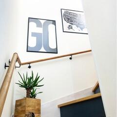 マリンランプ/階段/インテリア雑貨/ポスター/ユッカ/観葉植物/... わたしのお気に入り◯◯コンテスト用の1枚…
