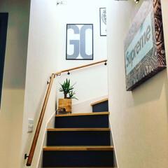 マリンランプ/階段/インテリア雑貨/ポスター/ユッカ/観葉植物/... わたしのお気に入り◯◯コンテスト用の1枚…(4枚目)