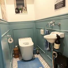 オカトー LaidBack トイレマット 60×60 ライトブルー(トイレ用マット)を使ったクチコミ「我が家のトイレインテリア。 ホテルライク…」