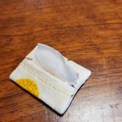まあやぽっけ/minneで販売予定です/ミンネ/minne/いちご/パイナップル/... 持ち物は飴ちゃん巾着袋とティッシュケース…(5枚目)