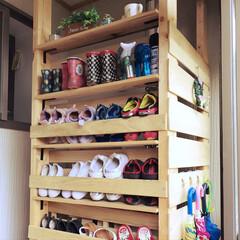 傘収納/靴収納/下駄箱/勝手口/DIY/ディアウォール/... ディアウォールでDIYした靴収納の全体像…