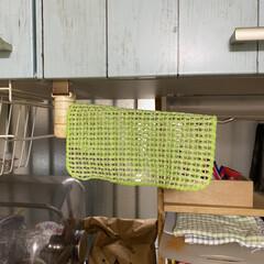 ペット用食器洗いメッシュ  食器のヌメリ取り  びっくりフレッシュ グリーン BH-24 | サンコー(その他犬用品)を使ったクチコミ「モニター当選しました❣️ とても嬉しくて…」