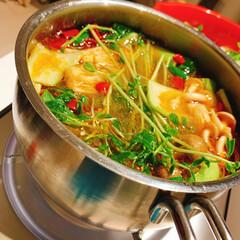 小肥羊鍋の素辣湯 しゃおふぇやん 火鍋 辛味 中華調味料 鍋料理 235g×3(なべつゆ、なべスープ)を使ったクチコミ「お家で火鍋しました笑 辛そうに見えて、意…」