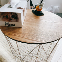 アイリスプラザ サイドテーブル バスケット 収納 ナチュラル 高さ40cm WTL-4040(サイドテーブル)を使ったクチコミ「カゴテーブルついに買ってしまった笑! 安…」