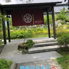 夏模様 箱根温泉♨️ 三世帯旅行に行ってきました…