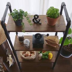 塩ビ管/カフェ風/観葉植物/Coffee/子育てママ/DIY/... 収納&飾り棚をDIY☺︎