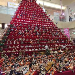 ひな祭り ピラミッドひな壇(1枚目)