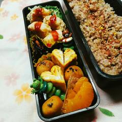ひじき/ガッツリご飯/旦那さん弁当/甘い卵焼き/雑穀米/作り置き/... 作り置きしていたつくねを使いました(^^…
