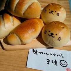 キャラパン/猫/ねこぱん/動物パン/自家製/天然酵母パン/... 今日の自家製天然酵母パン 生クリームいり…