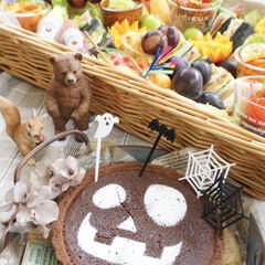 ハロウィン/キャンプ/キャンプ飯/おうちごはん/お弁当/ランチ/... Day C⃣A⃣M⃣P⃣𓌅  𝒮𝑒𝑝𝑡…